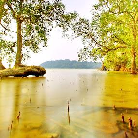 Pantai Penyabong, Mersing, Johor. by Esyam Din - Landscapes Beaches ( , landscape, beach )