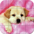 Puzzle - Puppies APK for Nokia