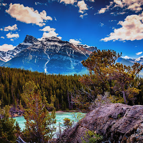 Siffleur Mountain Framed by Drew May - Landscapes Mountains & Hills ( siffleur mountain, national park, canada, alberta, locations, north saskatchewan river, trees, drew may photography, landscape, rocks, banff,  )