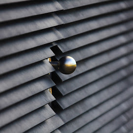 The spherical element by José Pereira - Abstract Patterns ( abstract, patterns, door, wall )