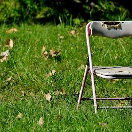 Abandoned by Erin Czech - Artistic Objects Furniture ( broken, chair, grass, outdoor, torn,  )