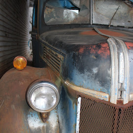 Vintage Ford by Vikki Wooley - Novices Only Objects & Still Life
