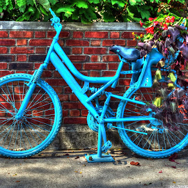 The Blue Bike by Tony Quinn - City,  Street & Park  Neighborhoods ( indiana, bike, brick wall, parl, floral display, blue bike, jeffersonville, flowers, wall, blue bicycle, bicycle )