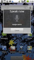 Screenshot of Voice Search