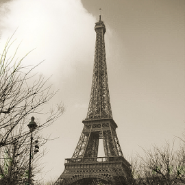 by Steve Scamehorn - Buildings & Architecture Statues & Monuments ( eiffel tower, paris )
