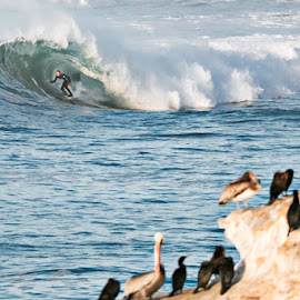 morning at Pescadero Jetties 08871 by Mike SurfshotHealey - Sports & Fitness Surfing
