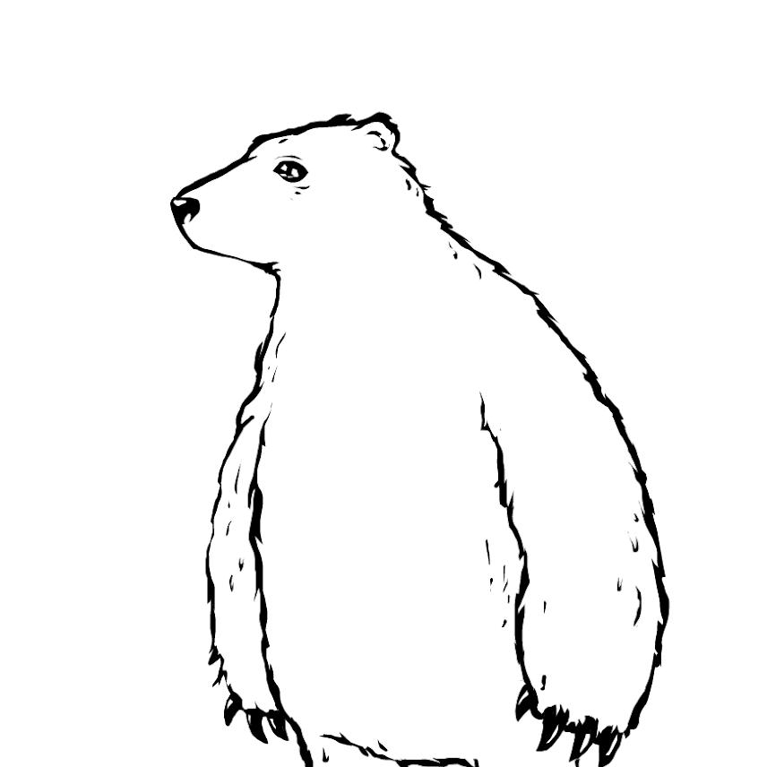 8  dress up the polar bear  u00bb drawings  u00bb sketchport
