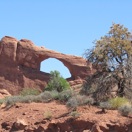 by Deegee English - Landscapes Deserts ( moab, red, desert, arches, formation )