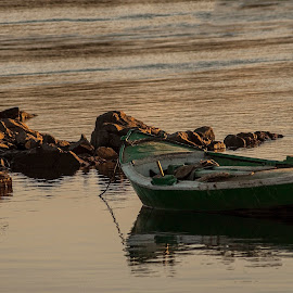 Stillness by Ahmed NaGuib - Transportation Boats ( waterscape, boats, sunrise )