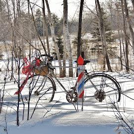 A winter use. by Carolyn Kernan - Transportation Bicycles