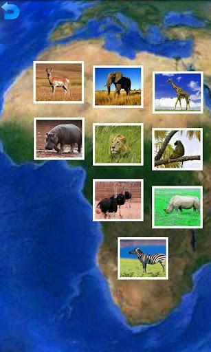 動物のパズル