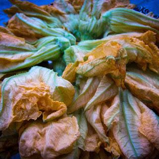 Fried Squash Blossoms Recipes