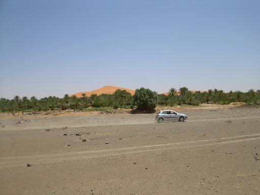 Peugeot 206 w akcji