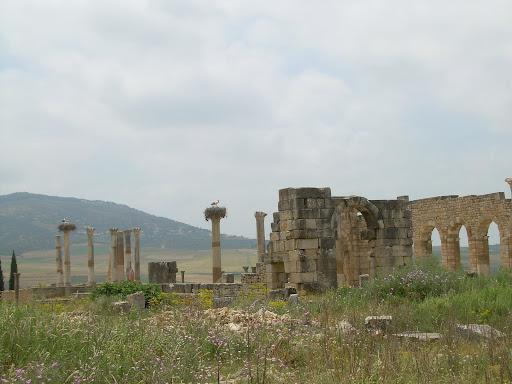 Cudowne ruiny Volubilis