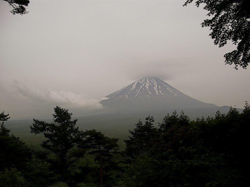 Mt. Fuji from Ashiwadayama 05