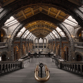 center perspective at NHM by Almas Bavcic - Buildings & Architecture Other Interior