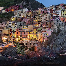 Manarola by night by Louise Tănasă - Buildings & Architecture Other Exteriors ( port, colors, night, manarola, evening )