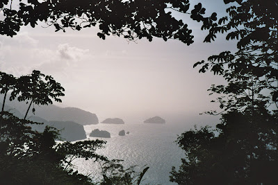 misty morning, tobago
