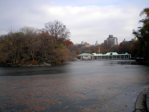 Frio em NY