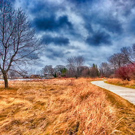 Templar Path by Ian Van Schepen - City,  Street & Park  City Parks ( clouds, tonemapped, nature, park, fall, blue, orange. color )