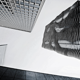 looking up in chicago by Lennie Locken - Buildings & Architecture Other Exteriors (  )