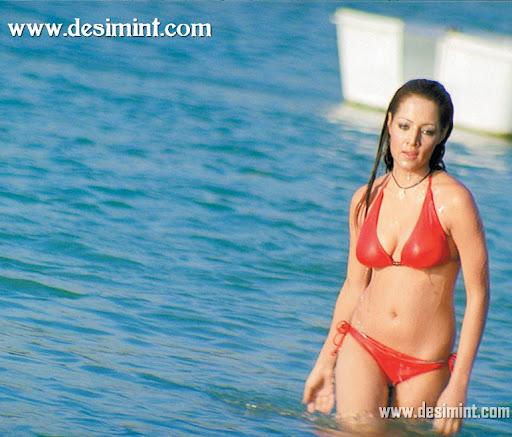 Hot_celina_jaitley_in_bikini_pics