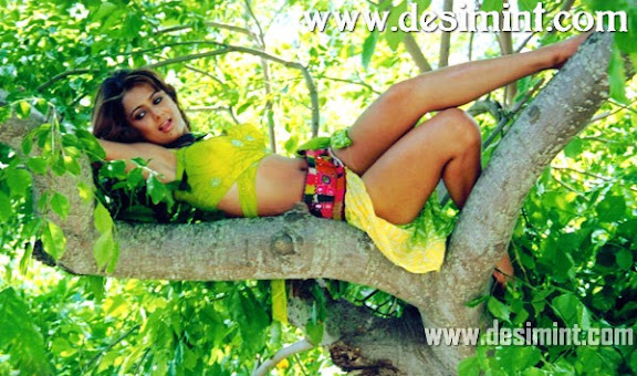 Sexy Amrita Arora Hot Pics Gallery