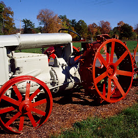 Antique Tractor by Walter Carlson - Transportation Other ( farm, old, red, fall, antique, tractor )