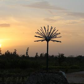 happy eve by Deva Dev - Landscapes Sunsets & Sunrises