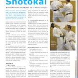 Enlace a artículo sobre Shotokai