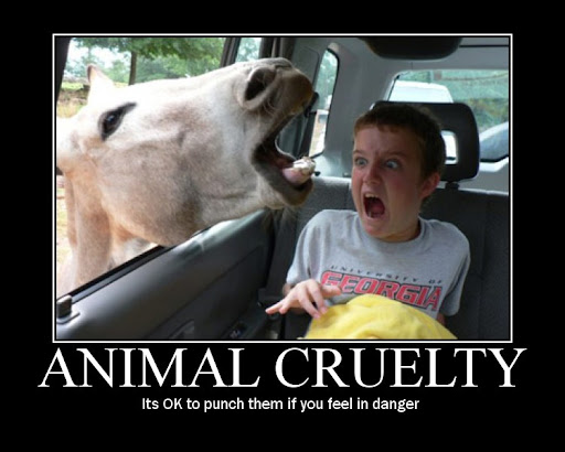 Antimotivational Picture of Animal Cruelty