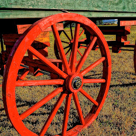 Old Wagon by Barbara Brock - Artistic Objects Industrial Objects ( red wagon wheels, antique wagon, wooden wagon )