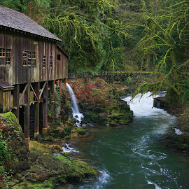 Cedar Creek Grist Mill by Melissa Brookmire - Buildings & Architecture Other Exteriors ( washington, lush, cedar creek grist mill, usa )