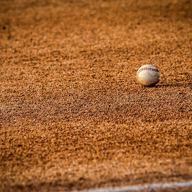 by Bob DeHart - Sports & Fitness Baseball