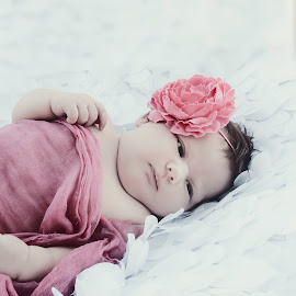 Noelani by Jenny Hammer - Babies & Children Babies ( girl, baby, cute, newborn )