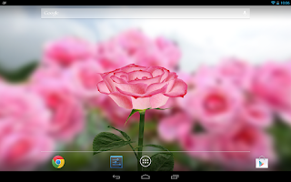 Screenshot of 3D Rose Live Wallpaper