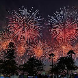 Celebration by Rizal Ismail - Public Holidays July 4th (  )