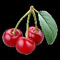 Fruit Words icon