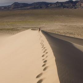Eureka Dunes by Tracey Dolan - Landscapes Deserts