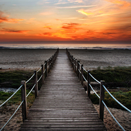 The path to the beach. by Antonio Amen - Landscapes Beaches ( sand, sunset, path, sea, beach )