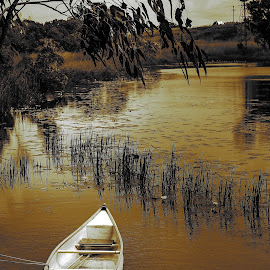 resting boat by Jason Day - Landscapes Waterscapes ( resting, waterscape, boat, photography )