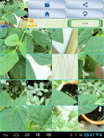 Screenshot of sliding picture puzzle