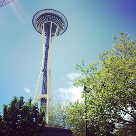 #spaceneedle #seattle by Brandi Wright - Buildings & Architecture Public & Historical