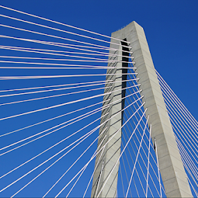 Abstract Upshot of Ravenel Bridge by Darlene Lankford Honeycutt - Abstract Patterns ( abstract, patterns, suspension bridge, architectural detail, lines, technical )