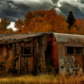 Abandoned by Terry Ricks - Buildings & Architecture Decaying & Abandoned ( trailer, fall colors, autumn, grass, south park colorado, fall, colorado, trees, trailer house, autumn colors )