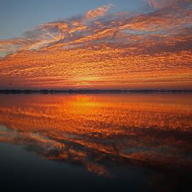 A Magical Florida Sunrise by Anthony Goldman - Landscapes Sunsets & Sunrises ( reflection, nature, florida, waaterscape, landscape, lakeland,  )