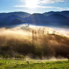 Fairyland by Ioana E - Landscapes Mountains & Hills ( hills, fog, sunny, trees, sunshine, morning, sun, mist )