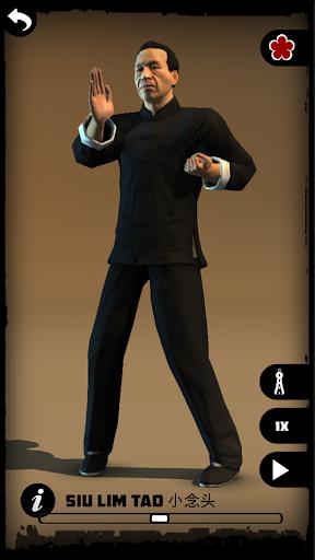 Wing Chun Kung Fu: SLT - screenshot