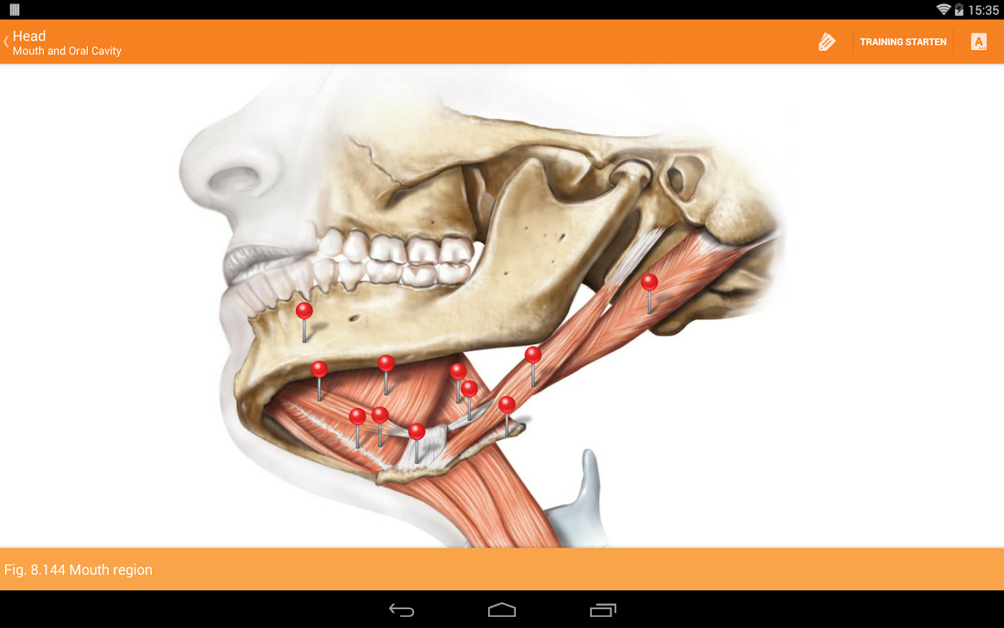 Sobotta Anatomy Atlas Screenshot 10