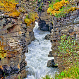 Athabasca Falls Canyon by Steve Rogers - Landscapes Waterscapes ( alberta, canada, waterscape, cascade, waterfall, moss, rapids, canyon )
